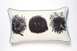Oology Cushion
