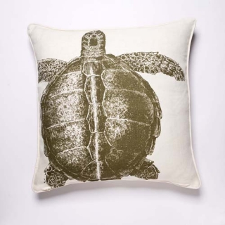 Turtle Cushion