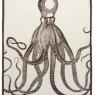 Octopus (47cm x 70cm) - Java